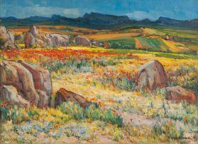 Hugo Naudé; Namaqualand in Spring