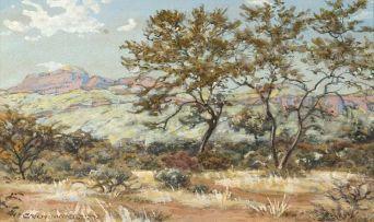 Erich Mayer; Landscape