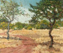 Dieter Aschenborn; Landscape