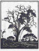 Jacob Hendrik Pierneef; Hardekoolboom, N. T.V.L. (Nilant 74)