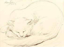 Johannes Meintjes; Cat