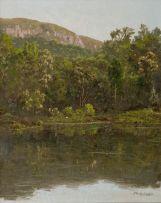 Jan Ernst Abraham Volschenk; In the Knysna Forest