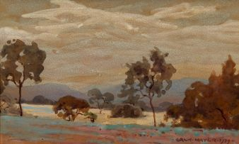 Erich Mayer; Bushveld at Dusk