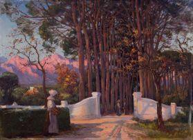 Hugo Naudé; A Cape Gateway
