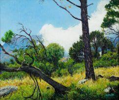 Walter Meyer; A Wooded Landscape