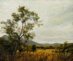 Walter Meyer; Buite Windhoek