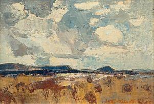 Titta Fasciotti; Karoo Landscape