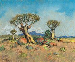 Conrad Theys; Quiver Trees - Niagramoeb-plains
