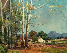 Piet van Heerden; Boland Landscape