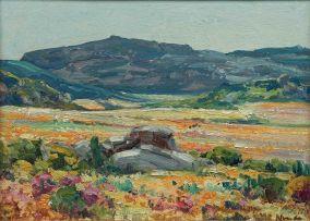 Hugo Naudé; Namaqualand Landscape