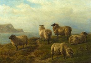 Charles Jones; Sheep Grazing on a Headland