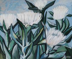 Peter Clarke; Flowering Hotnotsvy, Teslaarsdal