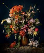 Andrew Putter; Hottentots Holland: Flora Capensis 1