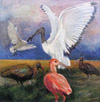 Leon Paul de Bliquy; Five Ibis
