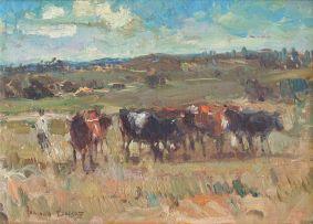 Adriaan Boshoff; Cattle in the Field