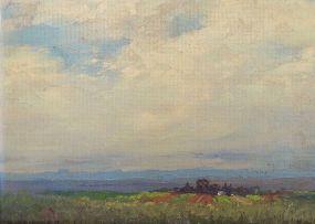 Willem Hermanus Coetzer; Extensive Landscape