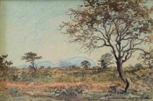 Erich Mayer; Bushveld Landscape