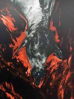 Jo Ractliffe; Untitled, Giraffe