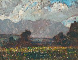 Robert Gwelo Goodman; Table Mountain
