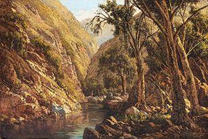 Tinus de Jongh; Wilderness