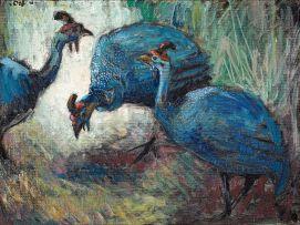 Zakkie Eloff; Guinea Fowl