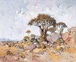 Conrad Theys; Groot Kokerboom, Naby Wynhoek, Springbok