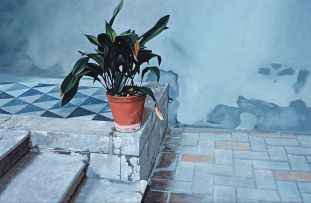 John Meyer; Still Life (The Flower Pot)