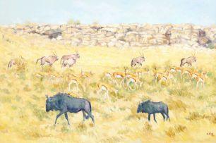 Zakkie Eloff; Wildlife, Etosha