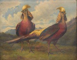 Bertha Müller; Two Pheasants