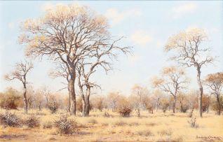 Francois Koch; Bushveld Landscape