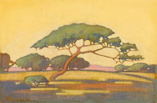 Jacob Hendrik Pierneef; Umbrella Thorn