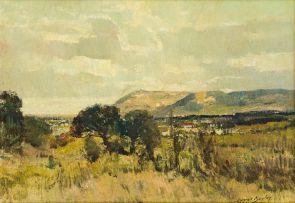 Errol Boyley; View from Newlands