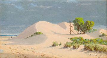 Jan Ernst Abraham Volschenk; Sandhills, Stillbay