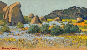 David Botha; Namaqualand in Spring