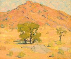 Piet van Heerden; Arid Landscape