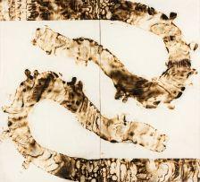 Sandile Zulu; Camouflage