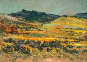 Hugo Naudé; Springtime, Namaqualand
