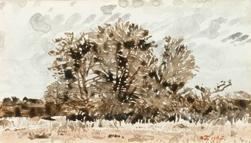 Adolph Jentsch; Bushveld