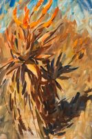 Dylan Lewis; Aloe Study