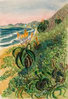 Edith King; Beach Aloes and Dunes (South Coast, Natal)