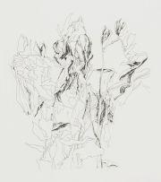 Andrew Verster; Fragile Things