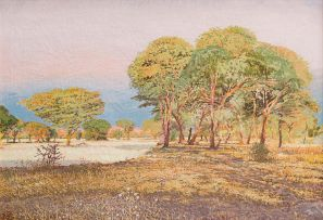 Adolph Jentsch; Near the Swakop River, Farm Schenkswerder, Okahandja District