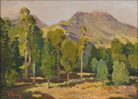 Robert Broadley; A View of the Hogsback Mountains