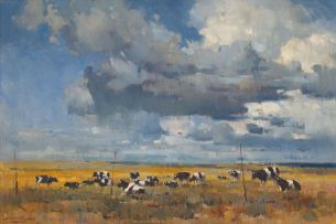 Dino Paravano; Friesland Cattle in an Extensive Landscape