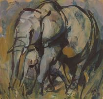 Hennie Niemann Jnr; Elephants