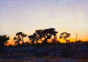 Walter Meyer; Sunset with Kameelthorn Trees