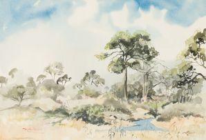 Tim Morris; Kruger Park