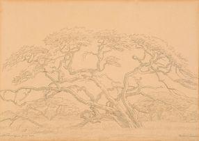 Jacob Hendrik Pierneef; Pontdrif, Limpopo