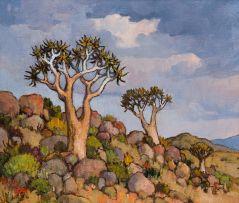 Conrad Theys; Kokerbome (Quiver Trees), Namakwaland