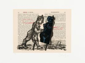 William Kentridge; Errors in School, Ptaismometry